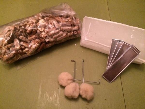 mushrooms spawn kit